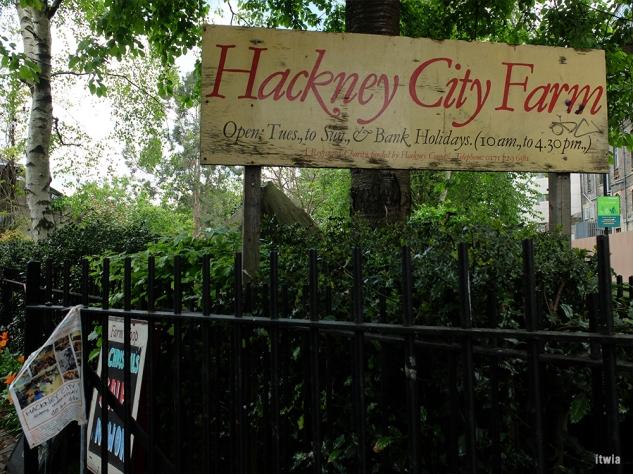 itwia_london_hackney7