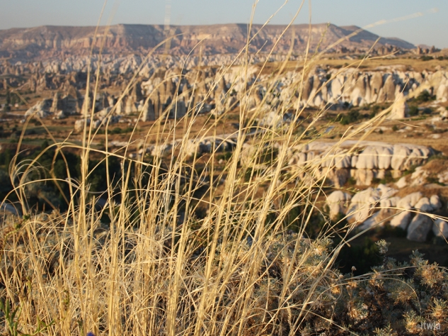 itwia_turquie_cappadoce11