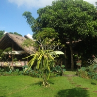 Swasti Eco Cottage @ UBUD