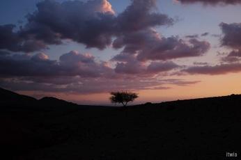 itwia_jordanie_feynan19