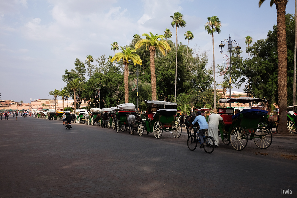itwia_marrakech21
