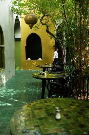 itwia_marrakech_le jardin2