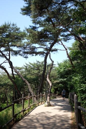 itwia_seoul_namsan7