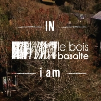 IN LE BOIS BASALTE i am...