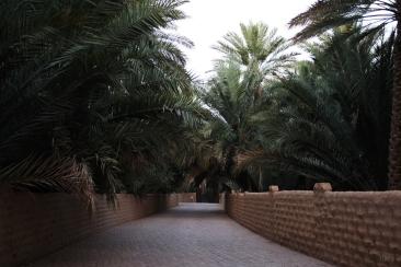 itwia_emirats_alAin11