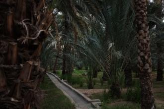 itwia_emirats_alAin11BIS