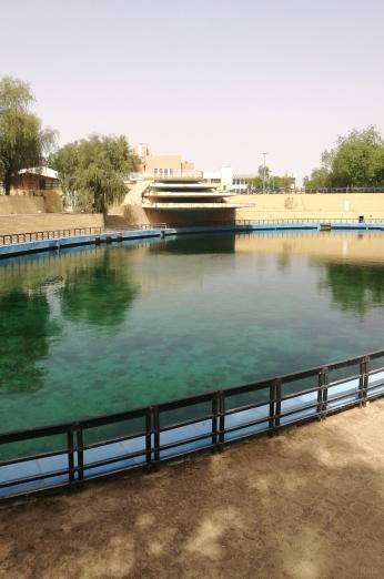 itwia_emirats_alAin2